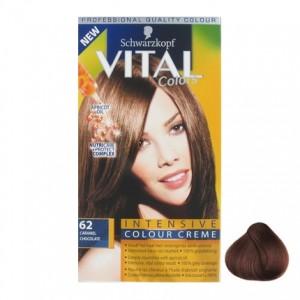 Vital Colours Caramel chocolate 62