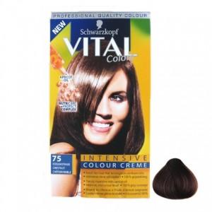 Vital Colours Edelkastanje 75